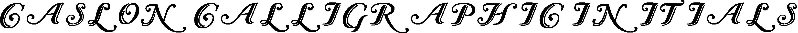 Caslon Calligraphic Initials title image